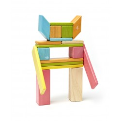 Set 24 piese din lemn magnetic Tegu